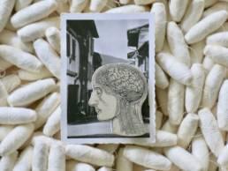 Broche ceramique stephanie cahorel sur carte postale vintage a découvrir chez chromosome a le concept store curieux de lille