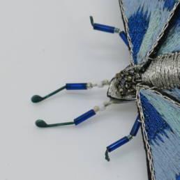 Broche papillon En Avril